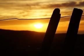 Sonnenaufgang über den Hügeln von Gisborne
