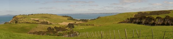 Panorama der Weiden
