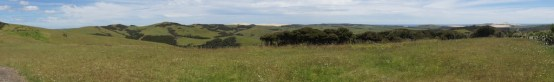 auf dem Weg zum Cape Reinga