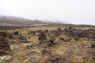 karge, steinige Landschaft