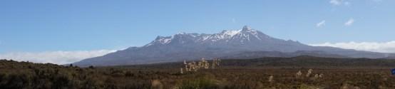 die Gebirgskette im Tongariro Nationalpark