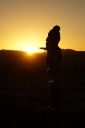 Maori Schnitzerei im Sonnenuntergang