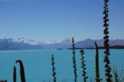 Lake Pukaki mit dem Mount Cook