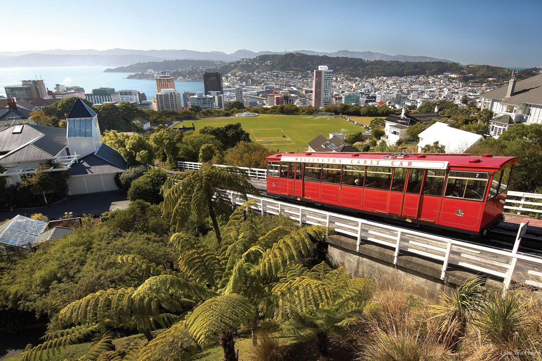 15 Things To Do In Wellington, New Zealand | Hand Luggage