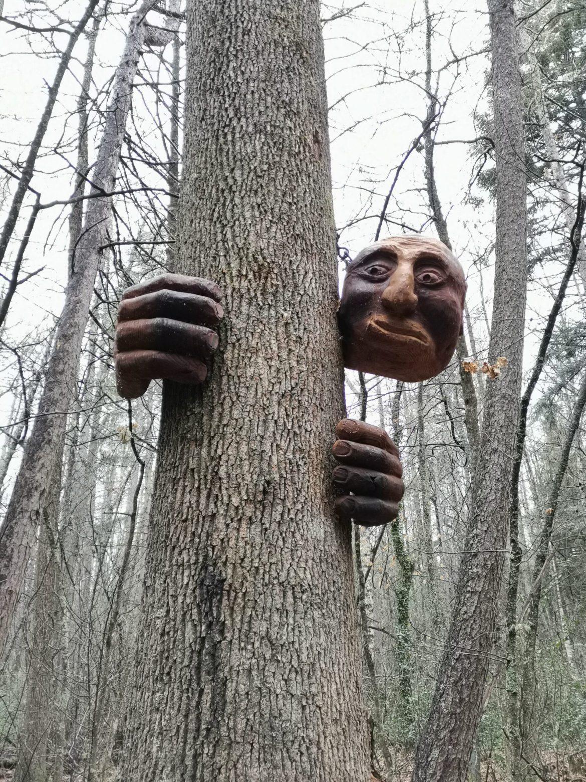 汉默温泉徒步路线测评:魔法木雕森林(5⭐️)