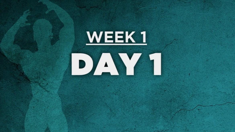12周健身挑战:第1天背部和臂力训练