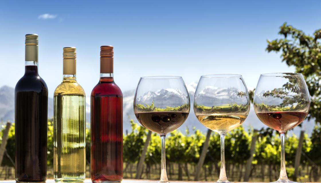 红葡萄,白葡萄,汽葡萄:10分钟了解葡萄酒入门知识