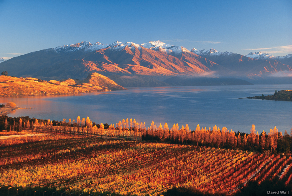 Fall Desktop Wallpaper Themes Lake Wanaka New Zealand Travel