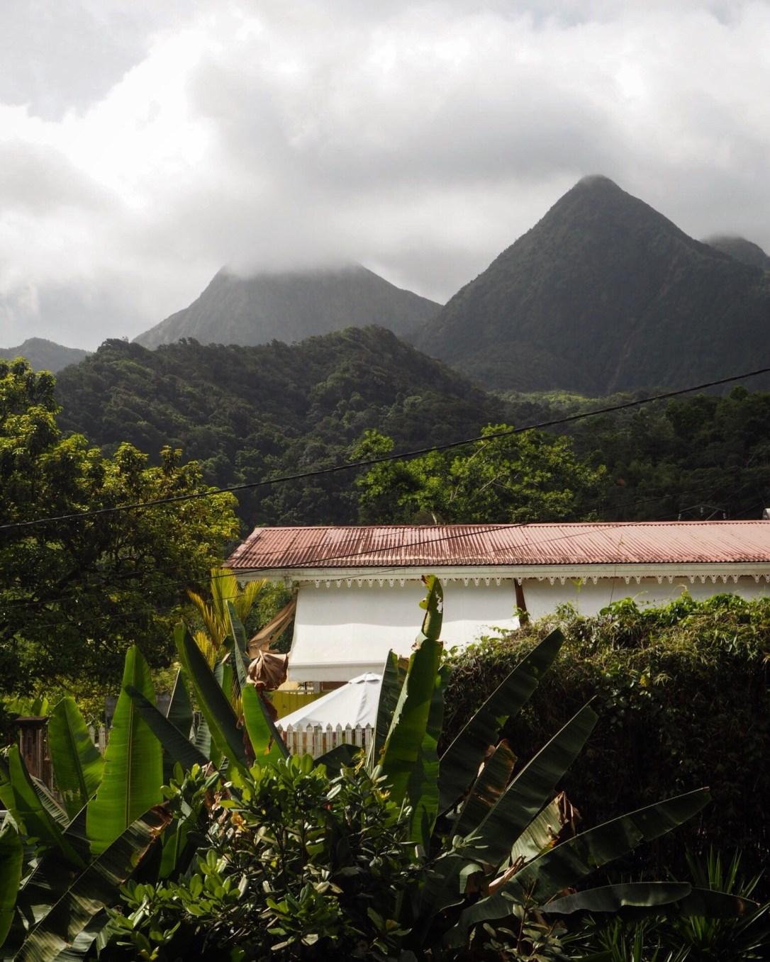 le Jardin de Balata, Martinique