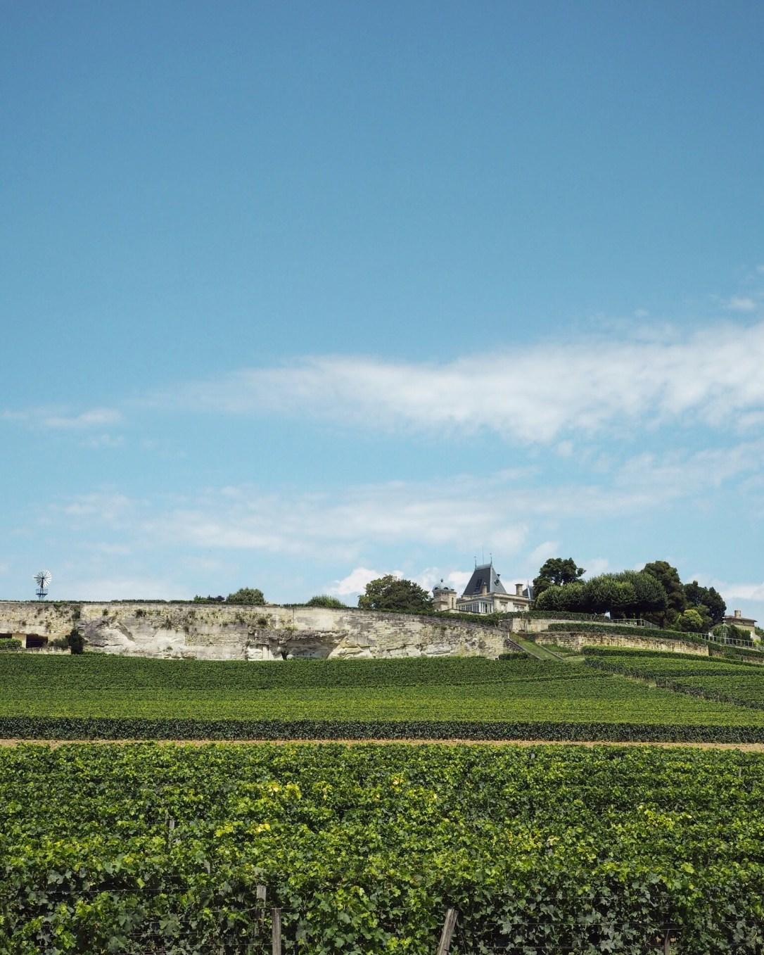 View of a chateaux on the horizon in Saint-Émilion