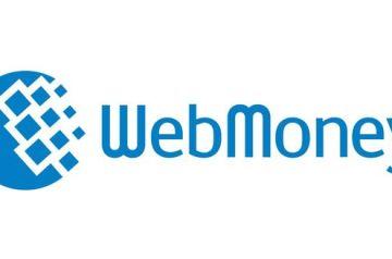 Китайские магазины и WebMoney