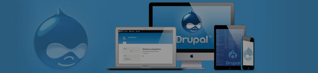 Looking for Drupal Development Agency