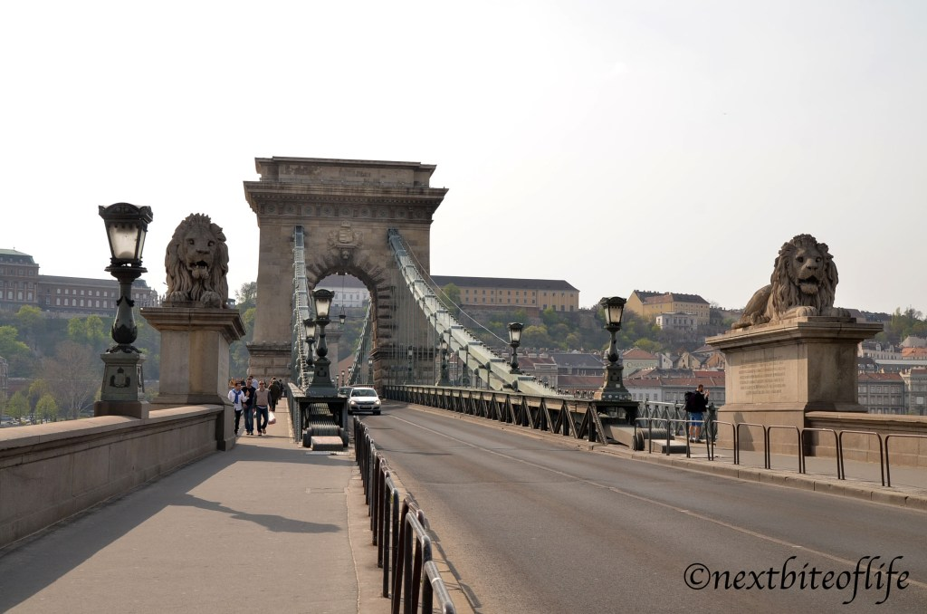 View from pest side chain bridge budapest