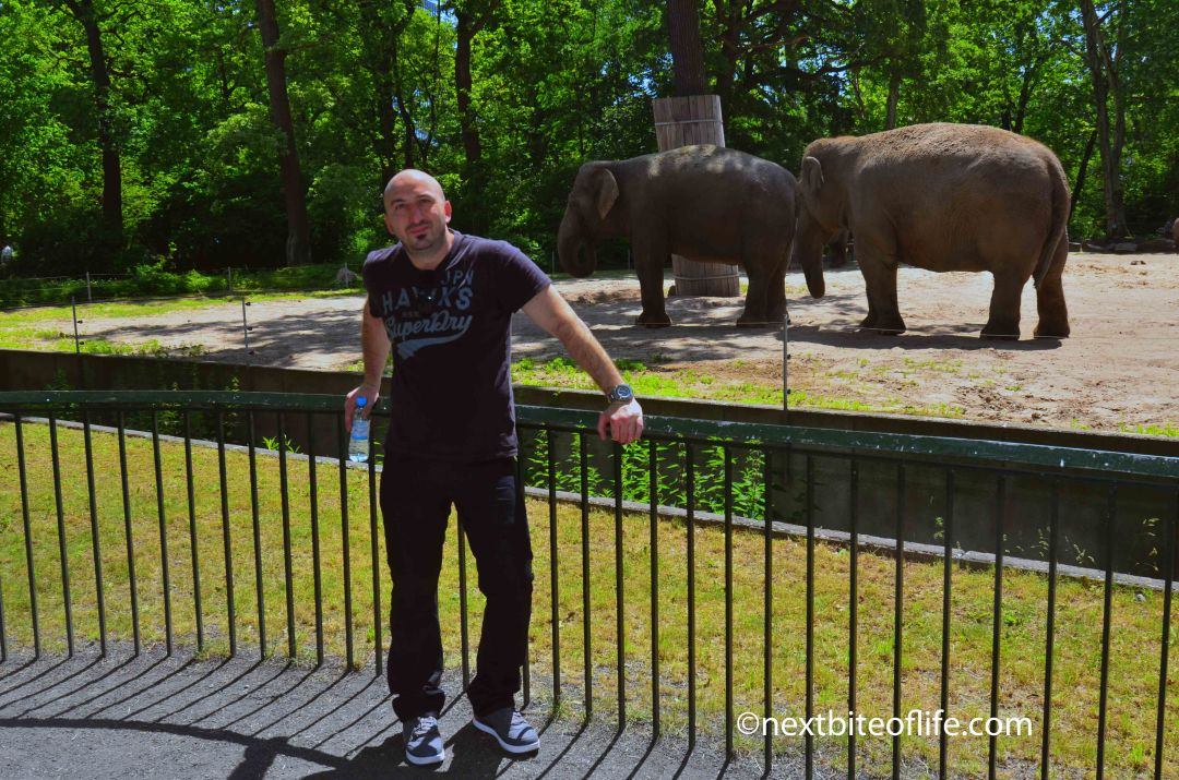 Berlin zoo outing