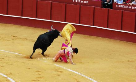 Matador versus Bull, the Corrida ( Bullfighting Sucks! )