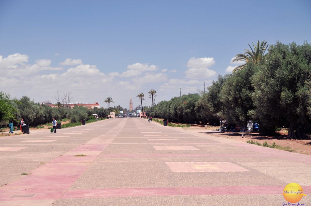 View of the Koutoubia from Menara gardens. On weekends, families walk (about 45mins) to the gardens for picnics.
