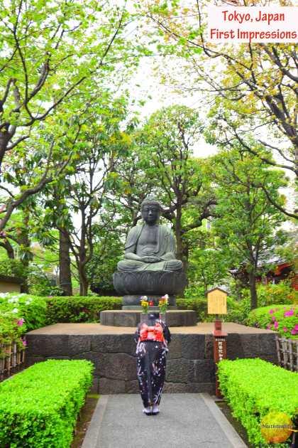 Tokyo japan first impressions #tokyo #japan #culture #edocityhistory #visittokyo