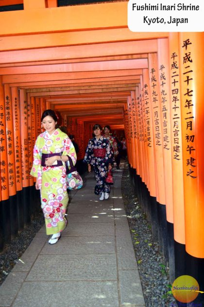 Fushimi Inari Temple #kyoto #japan #temple #fushimiinari #toriigates #inarifox #inaritemple #kyototemple #redgateskyoto