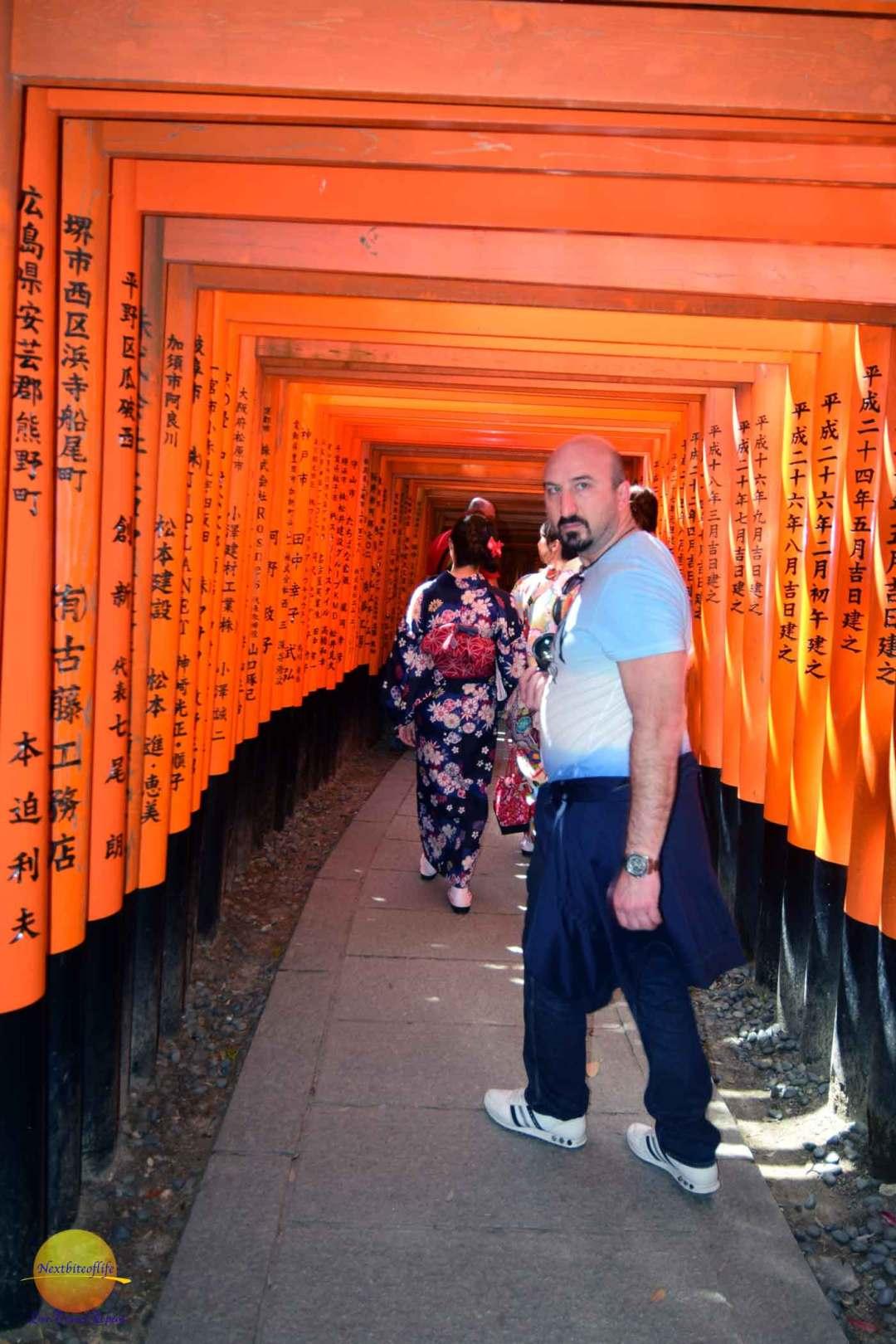 torii-gates-fushimi
