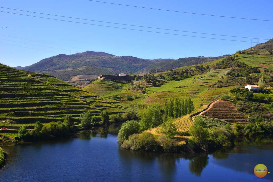 douro valley landscape, porto portugal