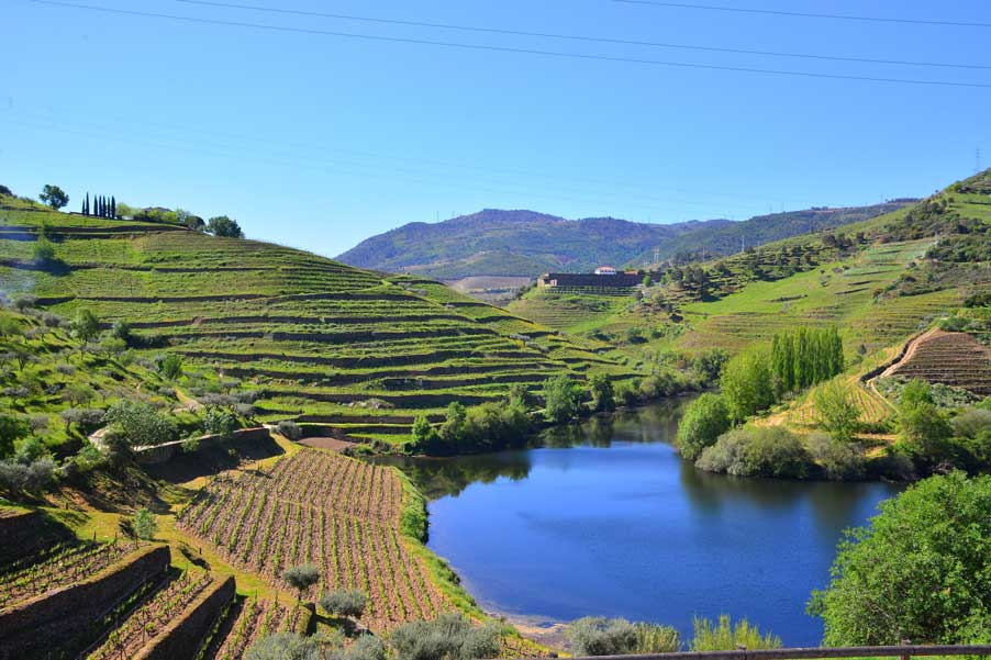 Douro Valley wine tasting tour pic of landscape and douro river