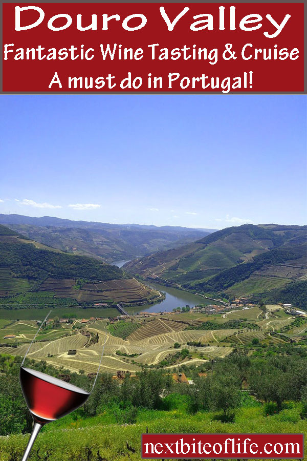 Douro Valley Cruise and Wine Tasting in Portugal #dourovalley #portugal #dourovalleycruise #dourovalleywinetasting #dourovalleytour