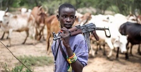 Herdsmen threat: Nigerians in Diaspora task Buhari