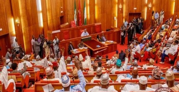 Illicit drug use:  Senate proposes rehabilitation centres in states