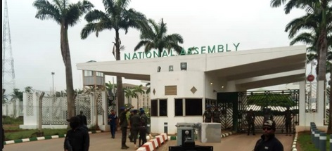 Siege to NASS is coup against democracy –IYC