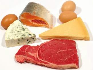 training-protein