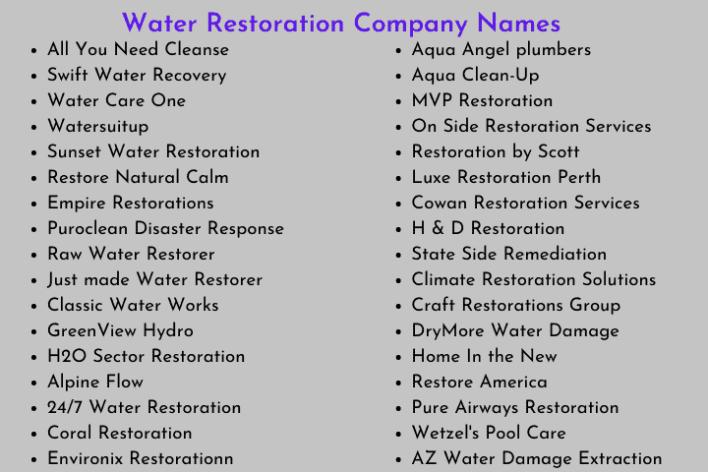 Water Restoration Company Names