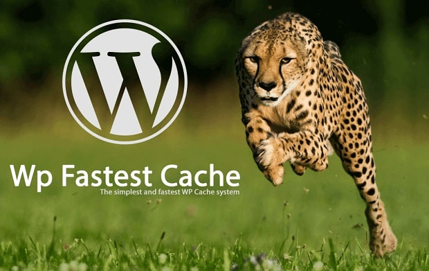 JAk zwiększyć szybkość ładowania strony? Dzięki wtyczce cache.