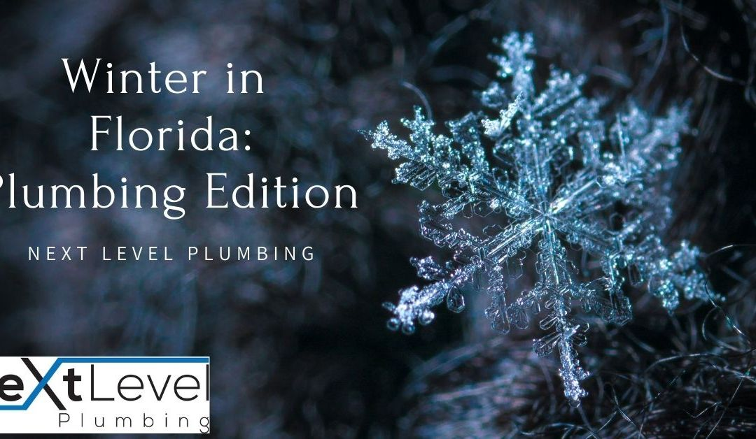 Winter in Florida: Plumbing Edition!