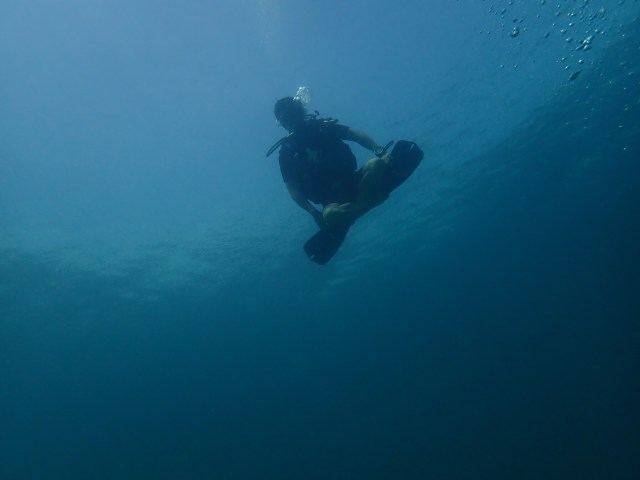 Today small dive koh adang