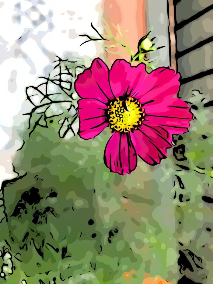 #pardon : le pardon chemin de la joie retrouvée