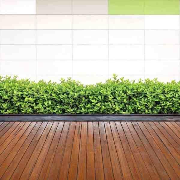 wooden walkway ideas