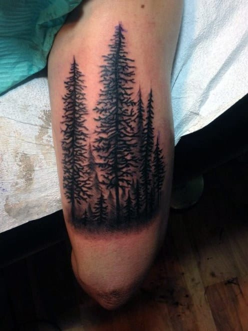 Pine Tree Forest Tattoo : forest, tattoo, Tattoo, Ideas, Wilderness