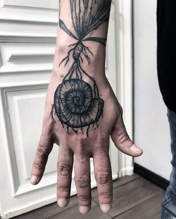 Ammonite Tattoo : ammonite, tattoo, Simple, Ammonite, Tattoo, Elegant