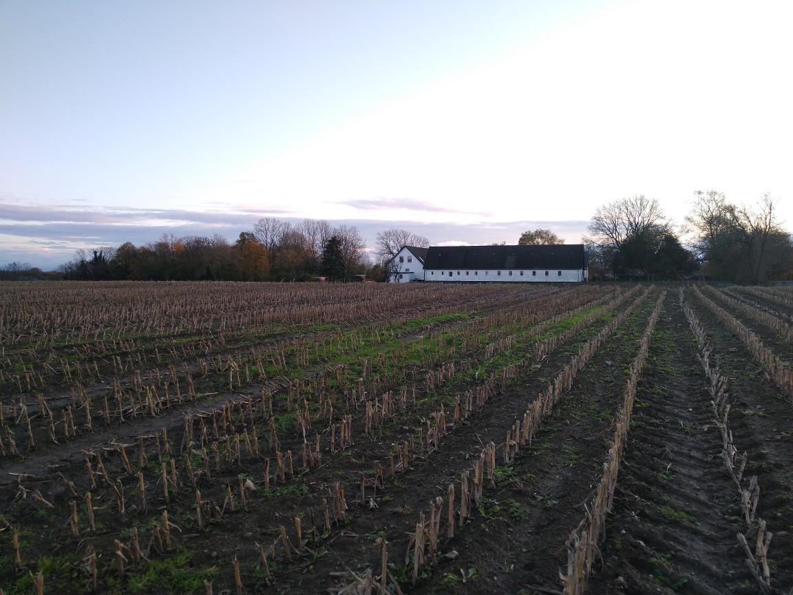 Haus hinterm Feld