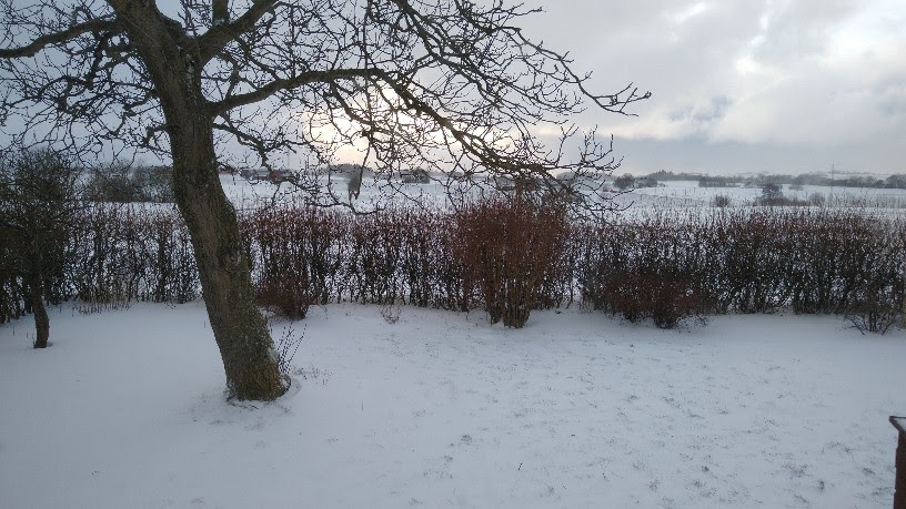 Kaltstart Bornholm