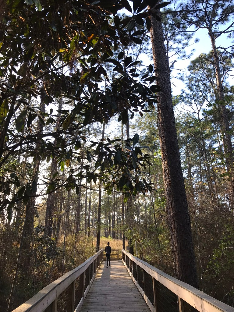 hiking in falling rivers state park