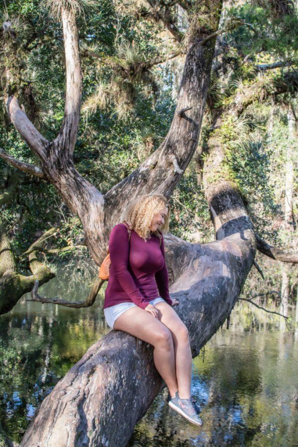 exploring hillsborough river state park next stop adventures