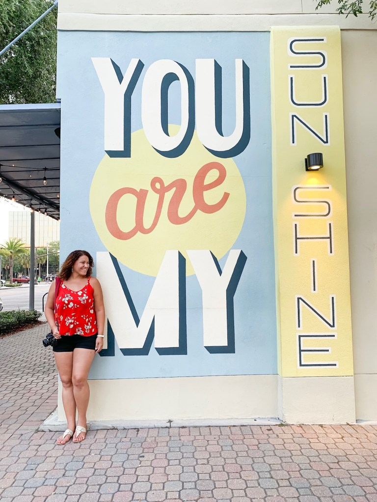 you are my sunshine mural art in st pete