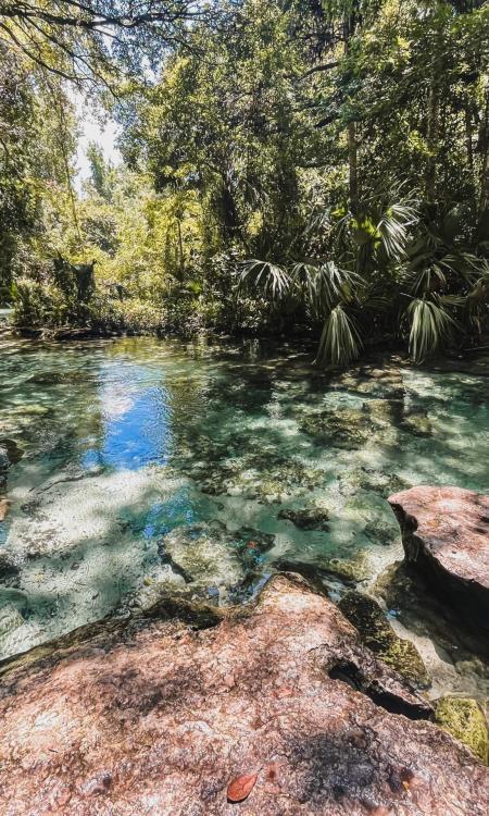 rock springs tubing in central florida