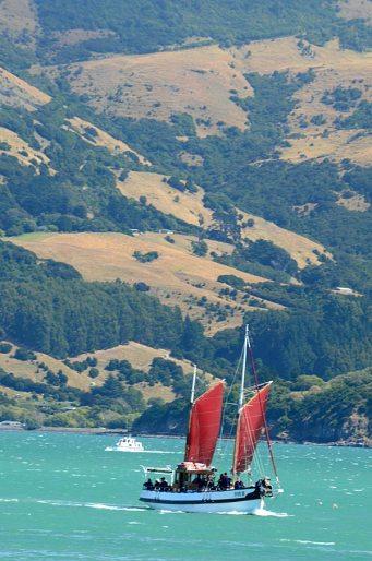 fox-ii-sailing