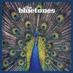 bluetones expecting to fly