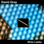 White_Ladder