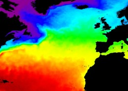 North Atlantic SST Jun 2008. Source: NOC from Ostia SST data