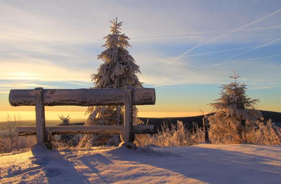 Sunset casting warm light on trees and a segment of a wooden fence covered in snow