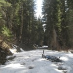 Kintla Lake road near Ford Cabin